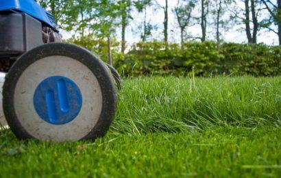 Cara Mudah Menggunakan Mesin Pencacah Rumput
